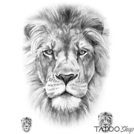 Tatouage ephemere lion réaliste - Pack