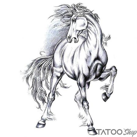 Tatouage ephemere cheval sauvage